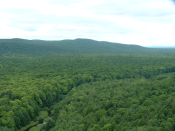 View of the back county from a peak at Porcupine Mountains State Park in Michigan
